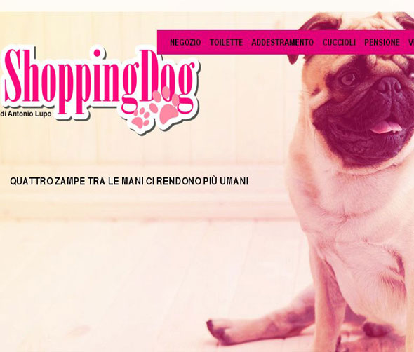 Shoppingdog